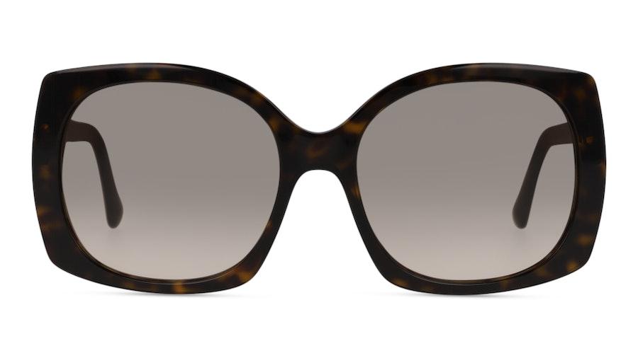 Dolce & Gabbana DG4385 502/13 502/13 Castanho / Havana