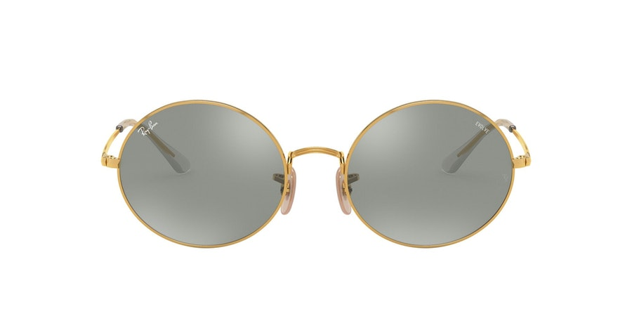 Ray-Ban 0RB1970 001/W3 Grijs / Goud