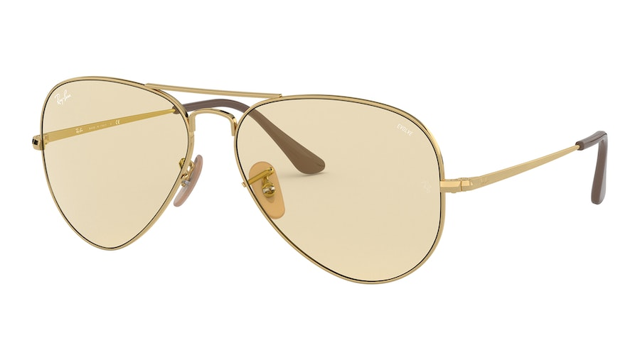 Ray-Ban 3689 001/T2 Bruin