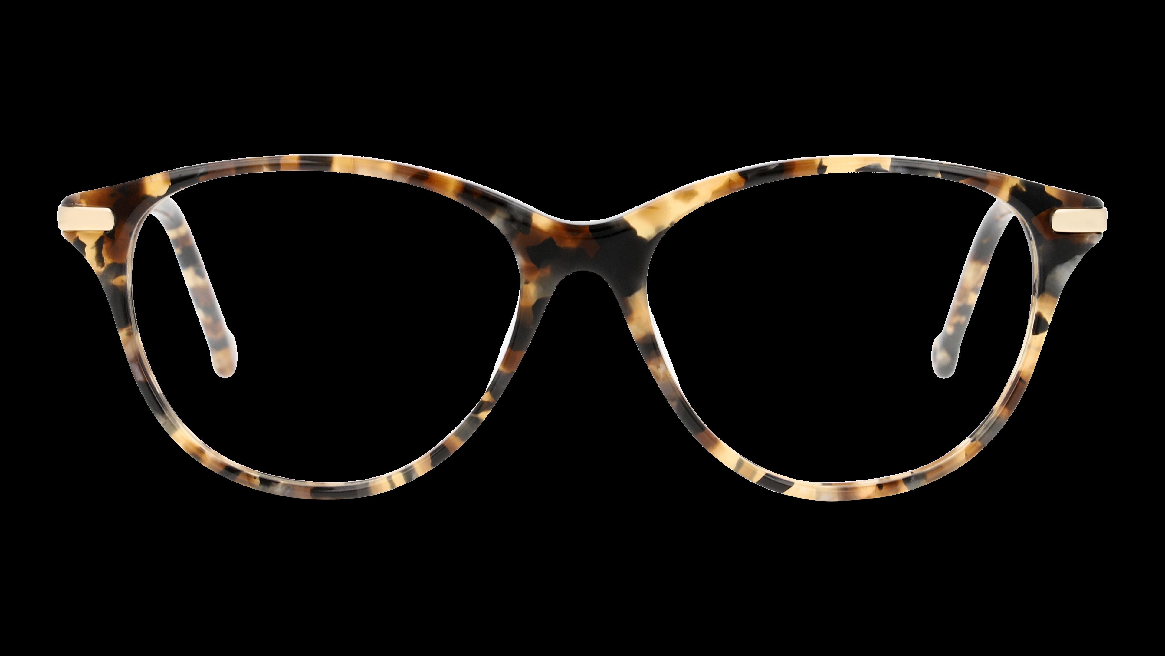Front Monkeyglasses MGROSA/35/5316/145 Sköldpaddsfärgad