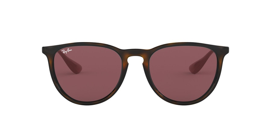 Ray-Ban 0RB4171 639175 Paars / Bruin