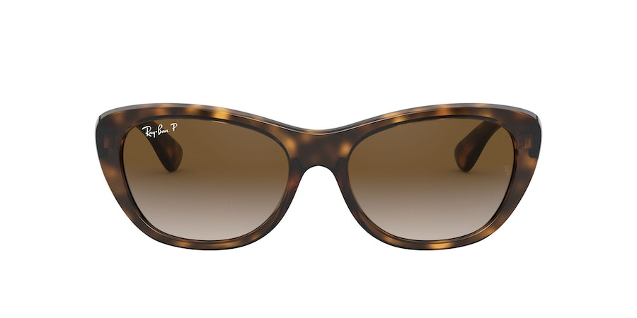 Ray-Ban 0RB4227 710/T5 Bruin / Bruin