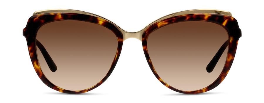Dolce & Gabbana DG4304 502/13 Castanho / Tartaruga e Dourado