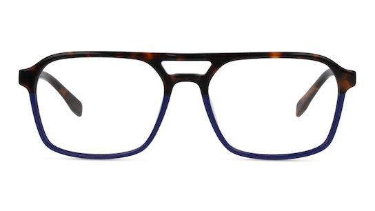 MNOM0043 CH00 Bruin, Blauw