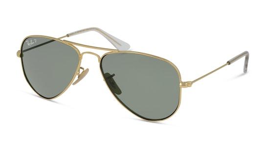 RJ9506S 223/2P Verde / Dourado