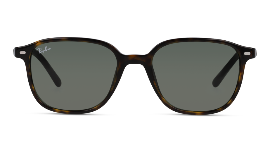 Front Ray-Ban Ray-Ban 0RB2193 902/32 51/18 Bruin/Groen