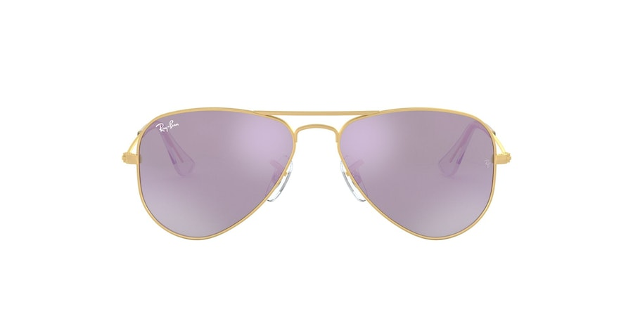 Ray-Ban RB9506S 249 Paars / Goud