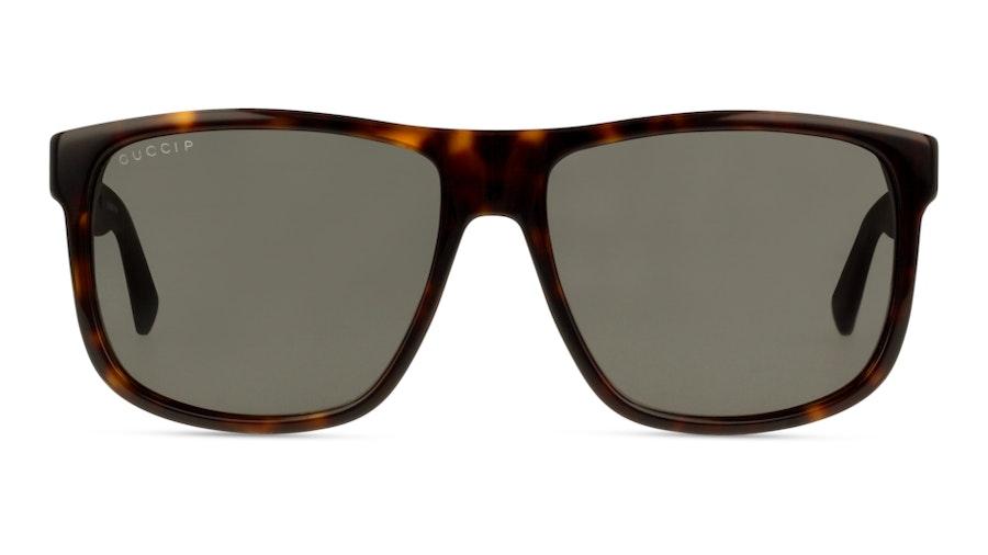 Gucci GG0010S 3 Cinza / Tartaruga