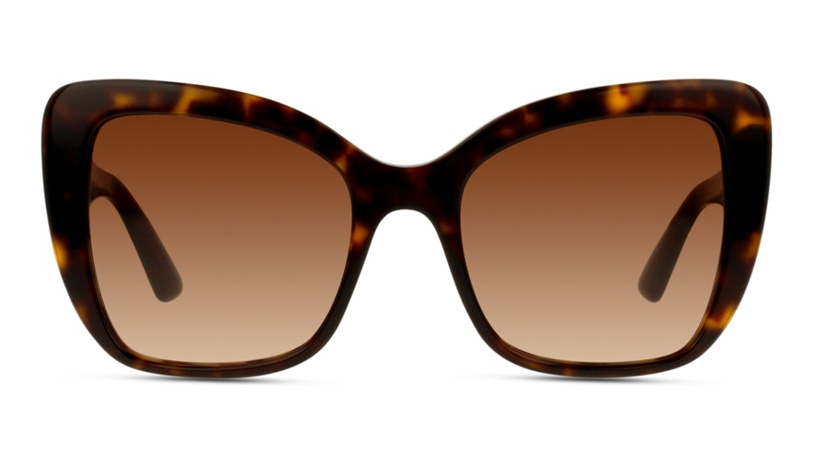 Dolce & Gabbana G4348 502/13 Bruin / Bruin