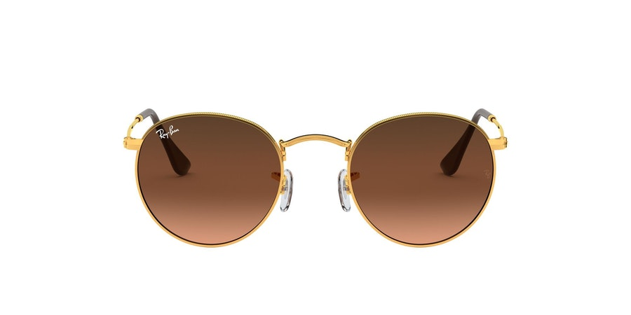 Ray-Ban 0RB3447 9001A5 Roze / Brons