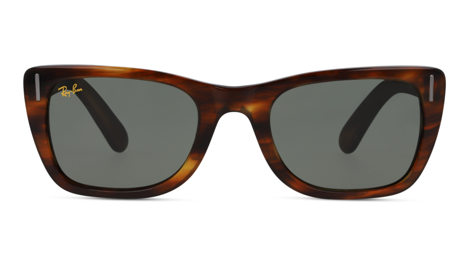 Front Ray-Ban Ray-Ban 0RB2248 954/31 52/22 Bruin/Groen