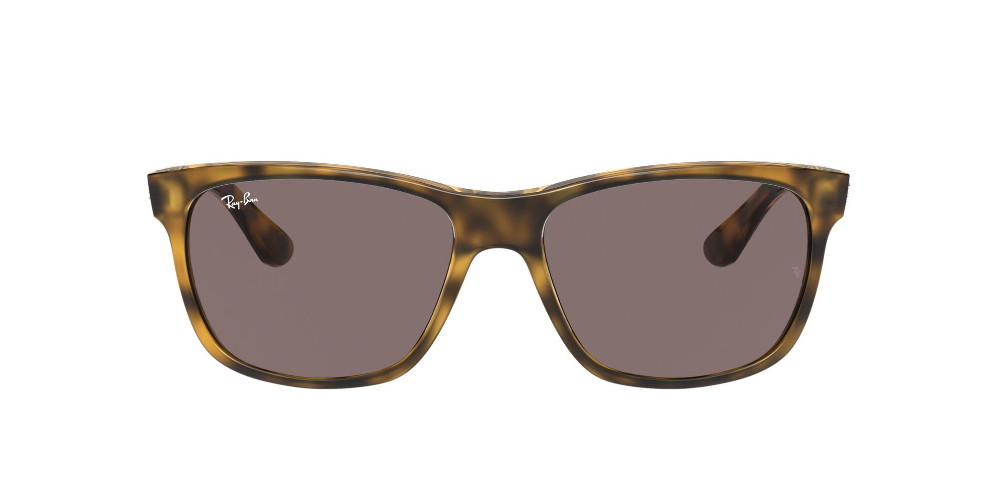Front Ray-Ban Ray-Ban 0RB4181 710/7N 57/16 Bruin/Paars