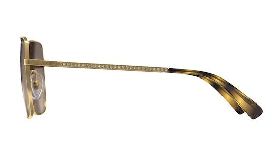 VO4175SB 280/13 Marrone / Oro