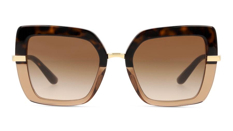 Dolce & Gabbana DG4373 325613 Castanho / Havana e Dourado