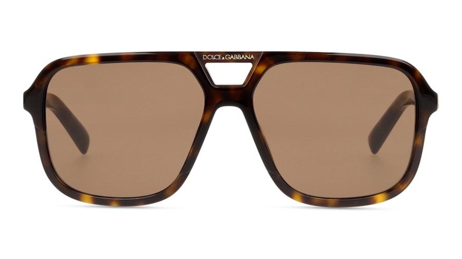 Dolce & Gabbana DG4354 502/73 Marrone / Tartarugato